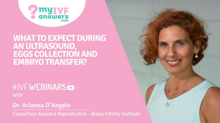 Embryo transfer, egg collection and ultrasounds - what can we expect?